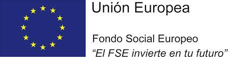 FSE FP Basica